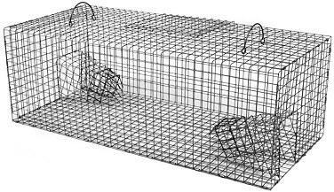 bird-traps-install